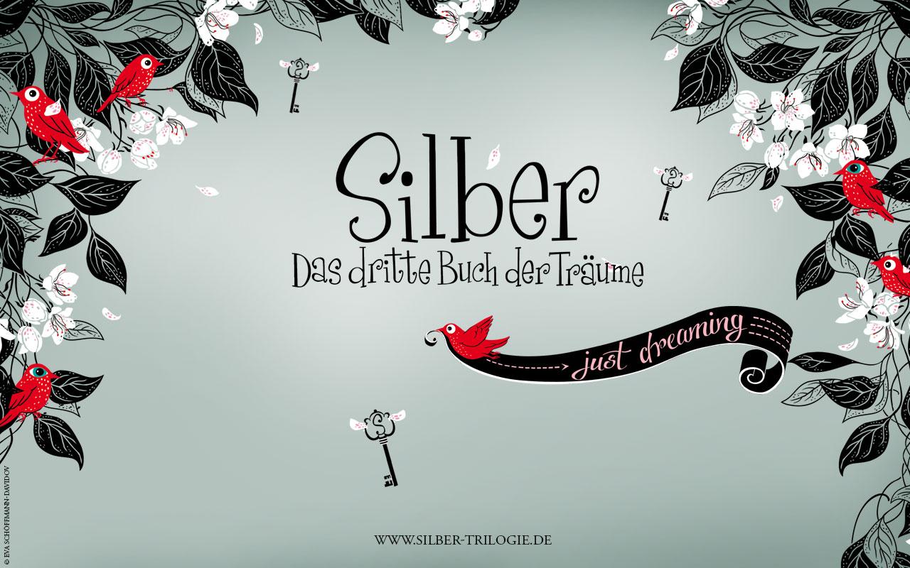 silber-hatterkep-08